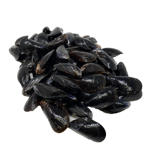 Whole mussels